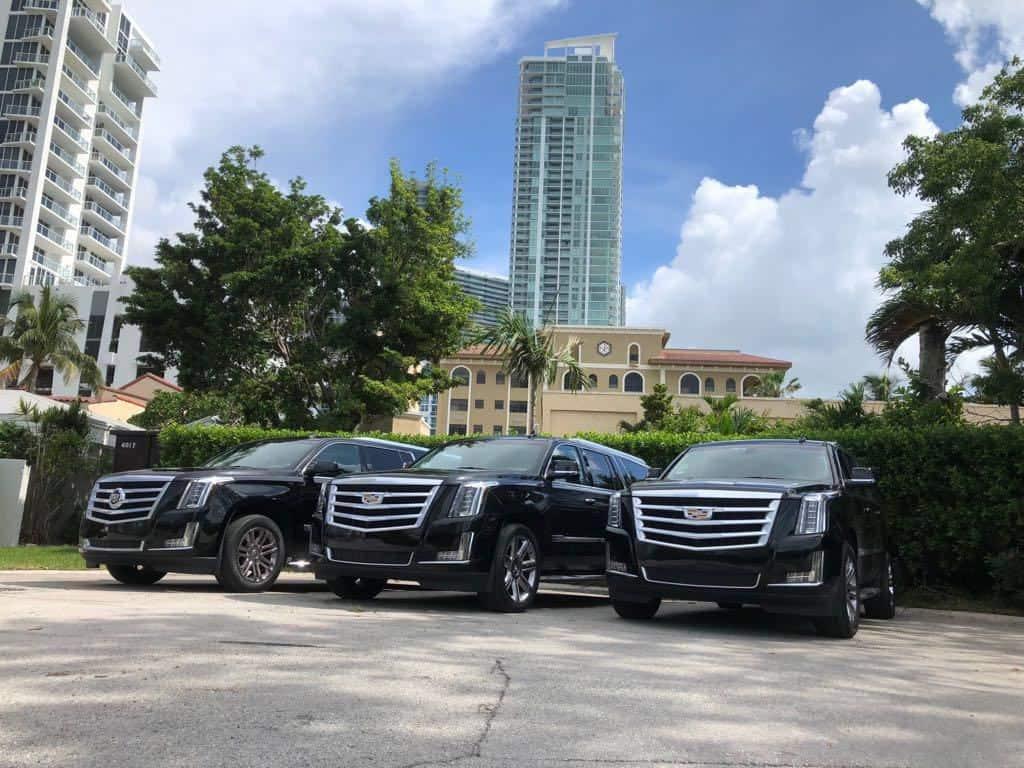Limo Fleet in Miami